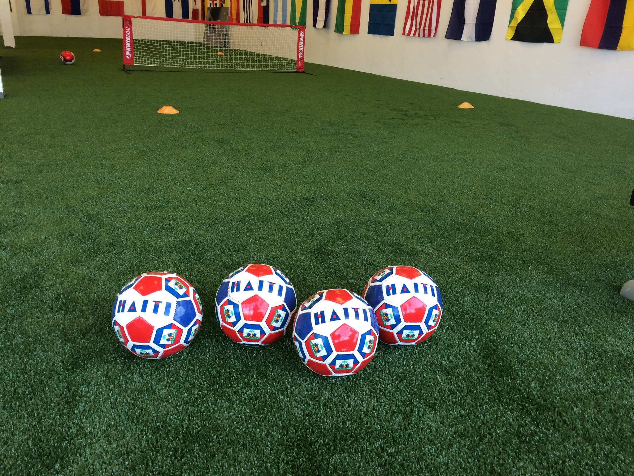 Americas Got Soccer – AGS is the largest indoor soccer ...